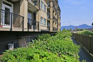 """Photo 16: 408 8531 YOUNG Road in Chilliwack: Chilliwack W Young-Well Condo for sale in """"AUBURN RETIREMENT"""" : MLS®# R2293451"""
