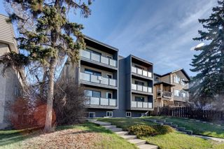 Photo 19: 301 2722 17 Avenue SW in Calgary: Shaganappi Apartment for sale : MLS®# A1098197
