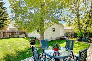 Photo 29: 11 Wellington Place SW in Calgary: Wildwood Detached for sale : MLS®# A1112496