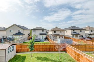 Photo 16: 17 Royal Birch Landing NW in Calgary: Royal Oak Residential for sale : MLS®# A1060735
