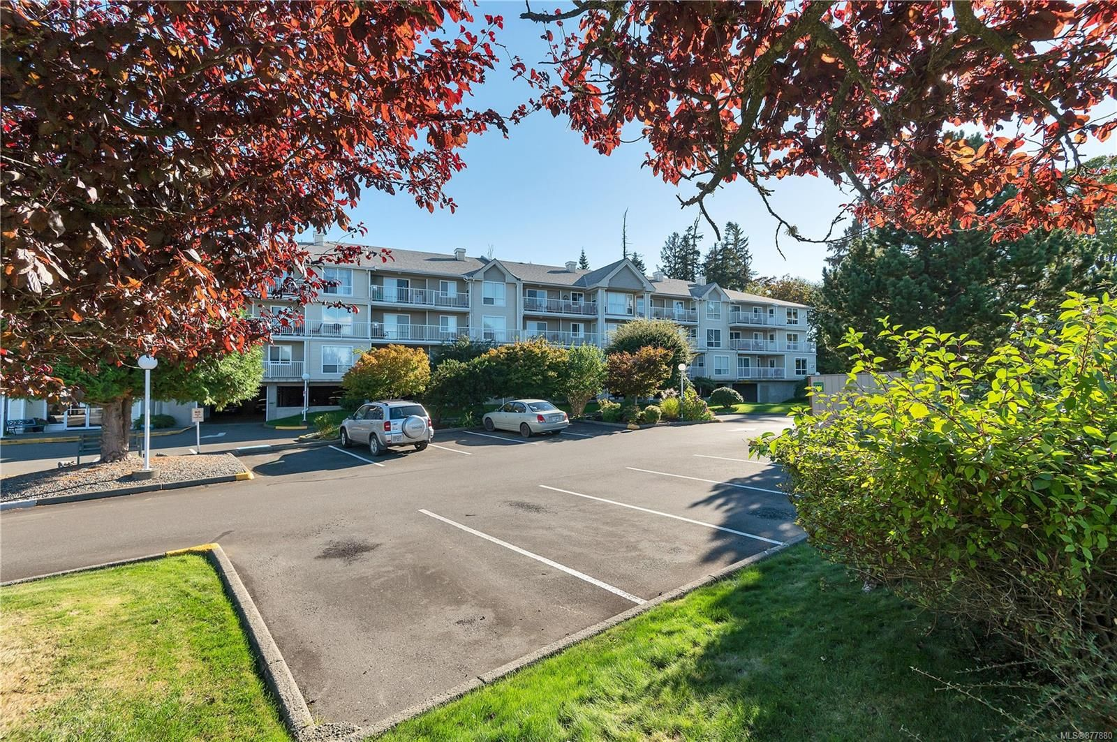 Main Photo: 205 155 Erickson Rd in : CR Willow Point Condo for sale (Campbell River)  : MLS®# 877880