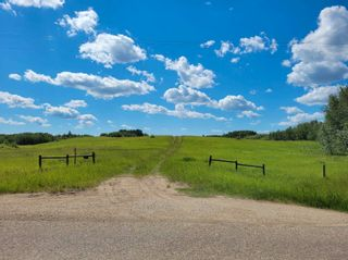 Photo 7: 51213 Rge Road 260: Rural Parkland County Rural Land/Vacant Lot for sale : MLS®# E4251252
