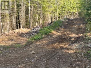 Photo 26: 1372 LAKE LORRAINE Road in Tory Hill: Vacant Land for sale : MLS®# 40052884