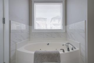 Photo 29: 335 Panorama Hills Terrace NW in Calgary: Panorama Hills Detached for sale : MLS®# A1092734