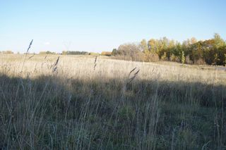 Photo 12: 31 53214 RR13: Rural Parkland County Rural Land/Vacant Lot for sale : MLS®# E4266458