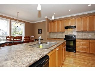 Photo 9: 19640 73B AV in Langley: Willoughby Heights House for sale : MLS®# F1413032