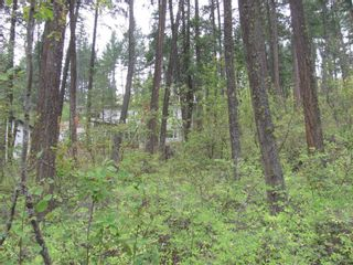 Photo 3: 7908 Alpine Road, in Vernon: Vacant Land for sale : MLS®# 10240275