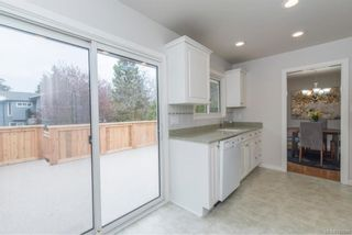 Photo 13: 1507 Winchester Rd in : SE Mt Doug House for sale (Saanich East)  : MLS®# 787661