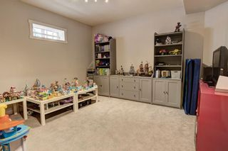 Photo 28: 32 Citadel Ridge Place NW in Calgary: Citadel Detached for sale : MLS®# A1070239