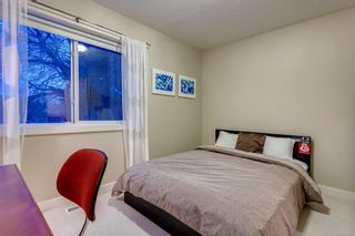 Photo 32: 810 21 Avenue NW in Calgary: Mount Pleasant Detached for sale : MLS®# A1016102