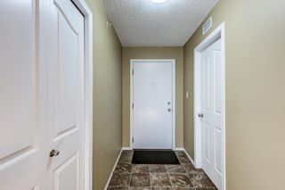 Photo 2: 420 274 MCCONACHIE Drive in Edmonton: Zone 03 Condo for sale : MLS®# E4253826