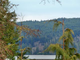 Photo 21: 5739 Siasong Rd in : Sk Saseenos House for sale (Sooke)  : MLS®# 866005