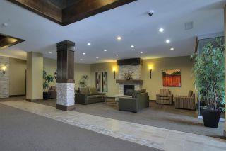 Photo 21: Alta Vista South in Edmonton: Zone 12 Condo for sale : MLS®# E4091195