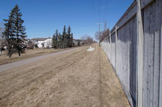 Photo 38: 117 Coverdale Road NE in Calgary: Coventry Hills Detached for sale : MLS®# A1075878