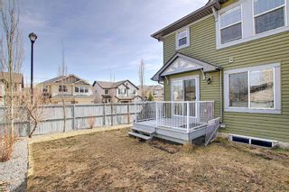 Photo 30: 143 Canals Circle SW: Airdrie Semi Detached for sale : MLS®# A1089969