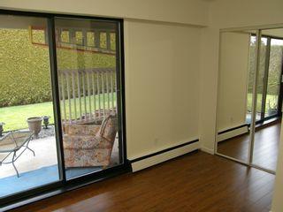 Photo 44: 20319 DEWDNEY TRUNK ROAD in MAPLE RIDGE: Home for sale : MLS®# V1044822