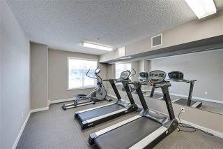 Photo 7: 414 6070 SCHONSEE Way in Edmonton: Zone 28 Condo for sale : MLS®# E4248308