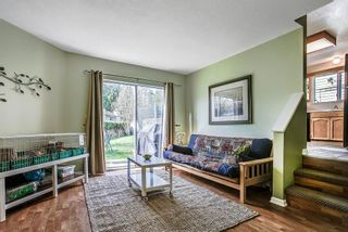 Photo 8: 11265 HARRISON Street in Maple Ridge: East Central House for sale : MLS®# R2046862