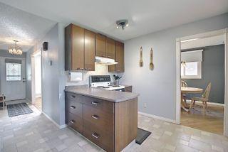 Photo 17: 9832 187 Street in Edmonton: Zone 20 House for sale : MLS®# E4253744