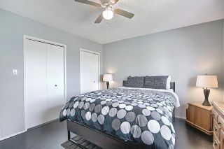 Photo 21: 16730 109A Street in Edmonton: Zone 27 House for sale : MLS®# E4253969