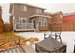 Photo 31: 555 AUBURN BAY Drive SE in Calgary: Auburn Bay House for sale : MLS®# C4049604