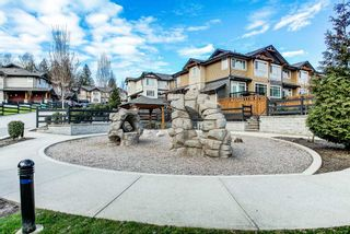 """Photo 28: 60 11305 240TH Street in Maple Ridge: Cottonwood MR Townhouse for sale in """"MAPLE HEIGHTS"""" : MLS®# R2559877"""