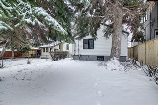 Photo 36: 218 19 Avenue NW in Calgary: Tuxedo Park Detached for sale : MLS®# A1073840