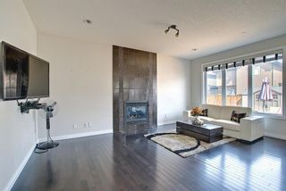 Photo 8: 113 Saddlelake Green NE in Calgary: Saddle Ridge Detached for sale : MLS®# A1127536