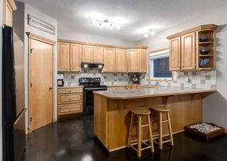 Photo 9: 103 DOHERTY Close: Red Deer Detached for sale : MLS®# A1147835