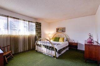 Photo 29: 10424 39A Avenue in Edmonton: Zone 16 House for sale : MLS®# E4264425