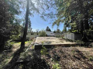 Photo 26: 950 PLYMOUTH Place in North Vancouver: Windsor Park NV House for sale : MLS®# R2571036