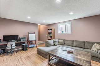 Photo 23: 23 STRATHFORD Close: Strathmore Detached for sale : MLS®# C4292540