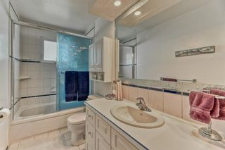 Photo 14: 703 Alderwood Place SE in Calgary: Acadia Detached for sale : MLS®# A1131581