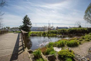 """Photo 13: 102 5600 ANDREWS Road in Richmond: Steveston South Condo for sale in """"LAGOONS"""" : MLS®# R2261531"""