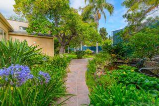 Photo 13: LA JOLLA House for sale : 4 bedrooms : 2626 Hidden Valley Rd