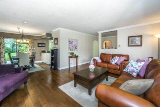 Photo 8: 20247 PATTERSON Avenue in Maple Ridge: Southwest Maple Ridge House for sale : MLS®# R2279033