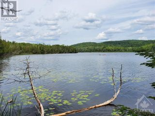 Photo 19: 2600 CLYDE LAKE ROAD in Lanark: Vacant Land for sale : MLS®# 1253879