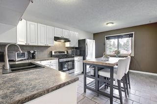 Photo 8: 110 Abalone Crescent NE in Calgary: Abbeydale Detached for sale : MLS®# A1127524