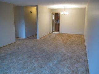 Photo 9: 9584-9586 WILLIAMS STREET in Chilliwack: Chilliwack N Yale-Well Multifamily for sale : MLS®# R2244551