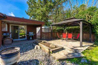 Photo 15: 4362 STEWART Road: Yarrow House for sale : MLS®# R2308598