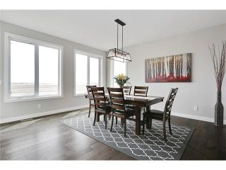 Photo 19: 11 MAHOGANY Park SE in Calgary: Mahogany House for sale : MLS®# C4111674