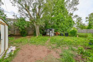 Photo 3: 52 Martha Street in Hamilton: House for sale : MLS®# H4062647