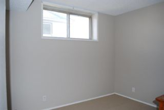 Photo 16: 3320 Doverthorn Way SE in Calgary: Dover Detached for sale : MLS®# A1095790