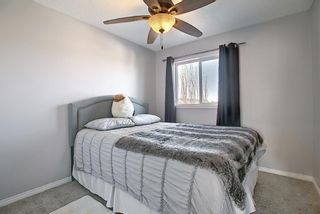 Photo 16: 19 AUTUMN View SE in Calgary: Auburn Bay Detached for sale : MLS®# A1076739