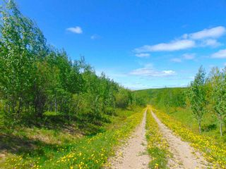 Photo 17: 13934 PACKHAM FRONTAGE Road: Charlie Lake Agri-Business for sale (Fort St. John (Zone 60))  : MLS®# C8039465