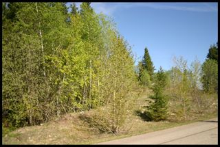 Photo 29: 21 6500 Southwest 15 Avenue in Salmon Arm: Panorama Ranch Vacant Land for sale : MLS®# 10230290