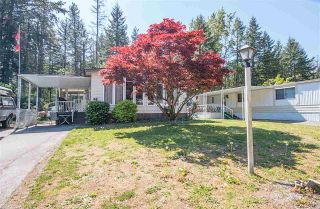 """Photo 15: 48 2305 200 Street in Langley: Brookswood Langley Manufactured Home for sale in """"CEDAR LANE"""" : MLS®# R2061584"""