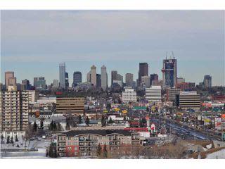 Photo 10: 1011 8710 HORTON Road SW in CALGARY: Haysboro Condo for sale (Calgary)  : MLS®# C3502812
