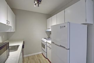Photo 6: 508 314 14 Street NW in Calgary: Hillhurst Apartment for sale : MLS®# A1117580