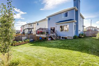 Photo 26: 4 Copperstone Landing SE in Calgary: Copperfield Detached for sale : MLS®# A1147039